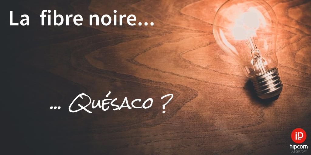 La Fibre optique Noire : Quésaco ?